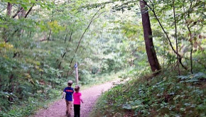 Children walking on path in family forest