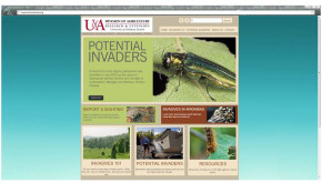 Screen shot of new web site: www.arinvasives.org