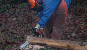 Running a chainsaw is more fun when it works well and you are safe!