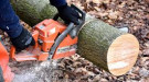 Individual using a chainsaw to cut a log into firewood.