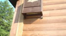 Big brown bat box