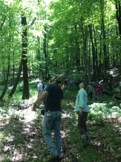 Forest management from a landowner's perspective
