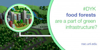 Did you know food forests are a part of green infrastructure? Graphic: Joseph Banegas, NAC