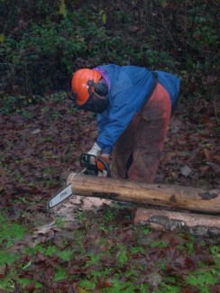 Person with a chainsaw cutting wood