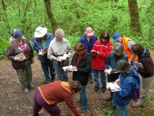 An Oregon WOWnet native plant ID class